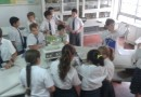 Observando en Ciencias Naturales - Junior 5